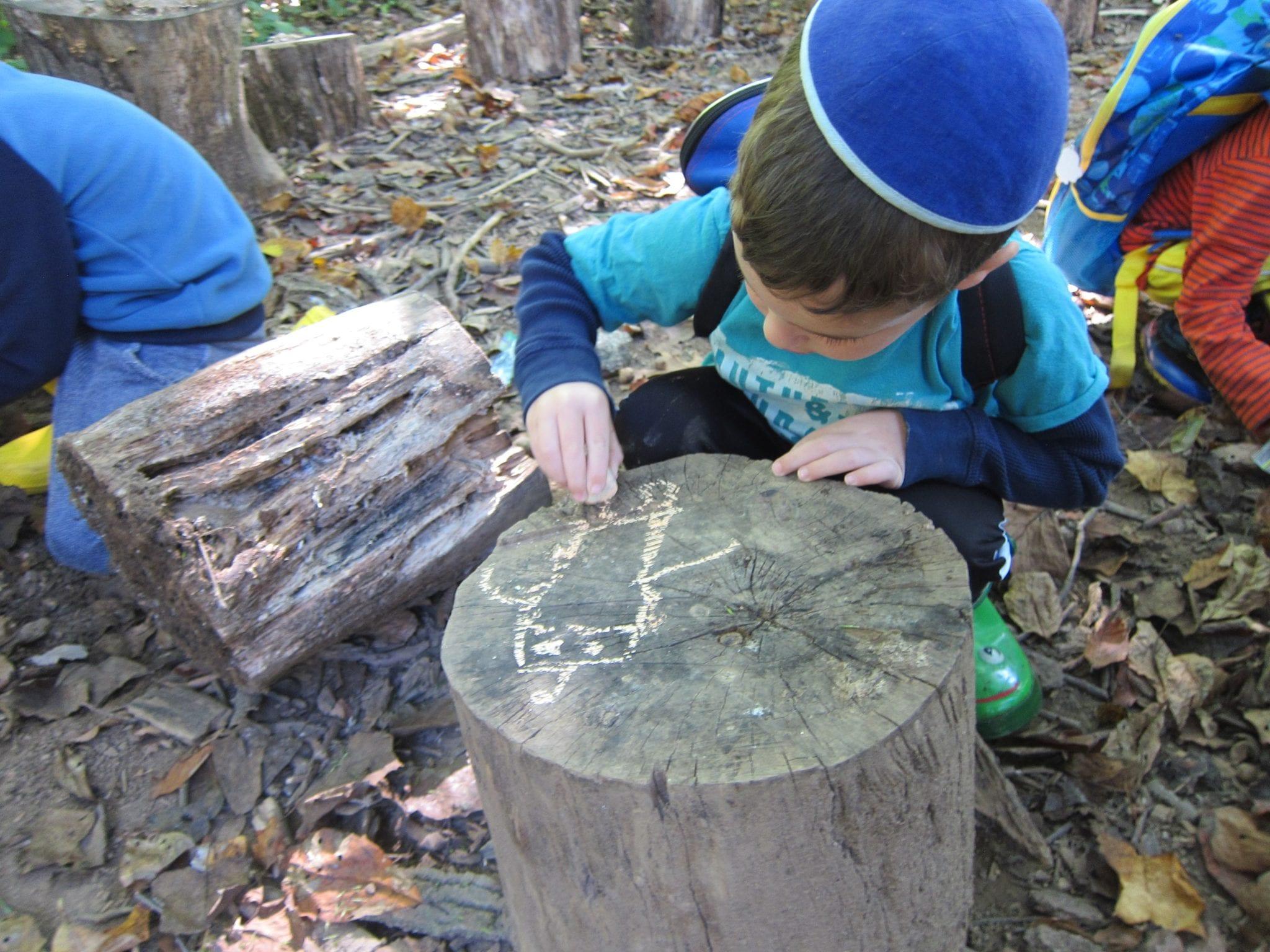 Noam decorating stump irvine nature center - Stump decorating ideas inspiration from nature ...