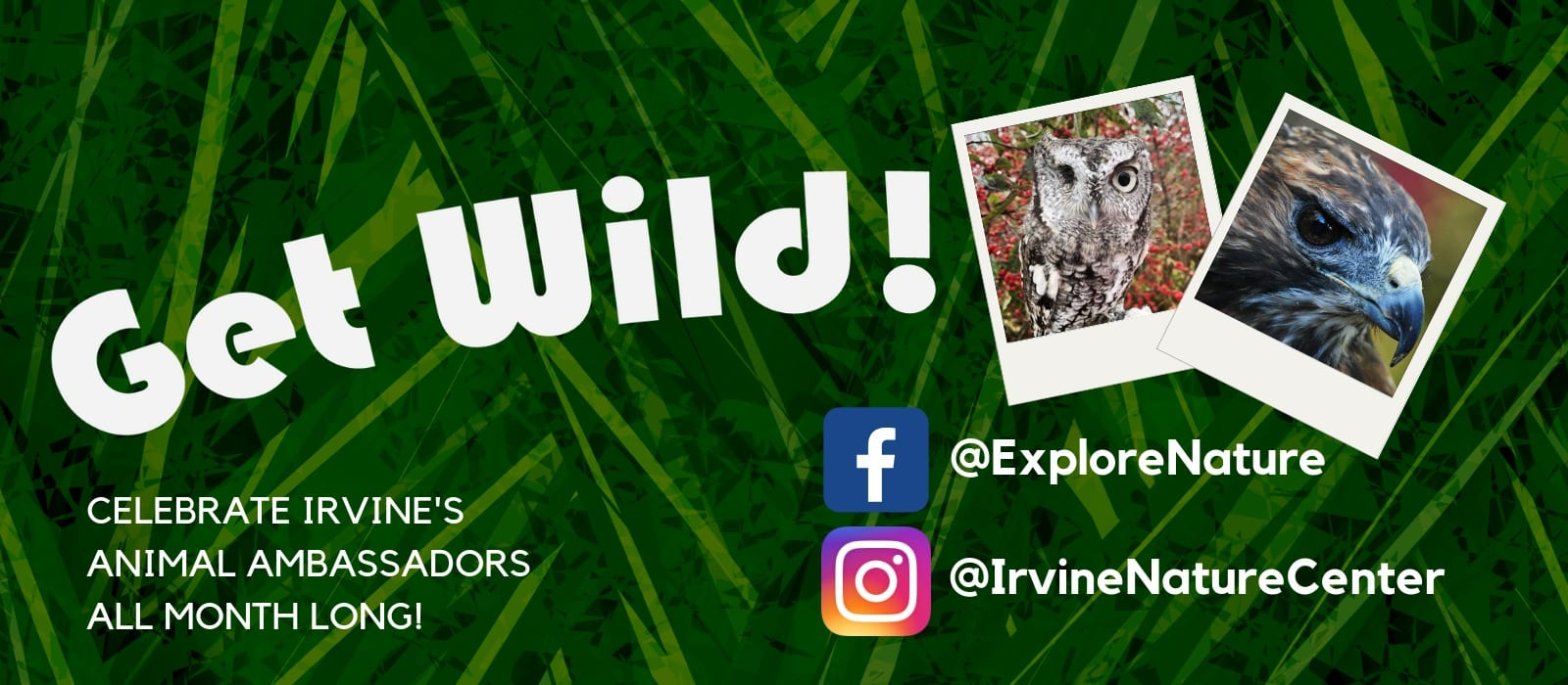 CELEBRATE-IRVINES-ANIMAL-AMBASSADORS-ALL-MONTH-LONG-WITHANIMAL-ENCOUNTERS-OF-ALL-KINDS.CHOOSE-YOUR-FAVORITE-MAKE-A-DONATION-AND-GET-SOME-SWEET-SWAG-TO-HELP-IRVINE-CELEBRATE-GIVING-TUESDAY-2